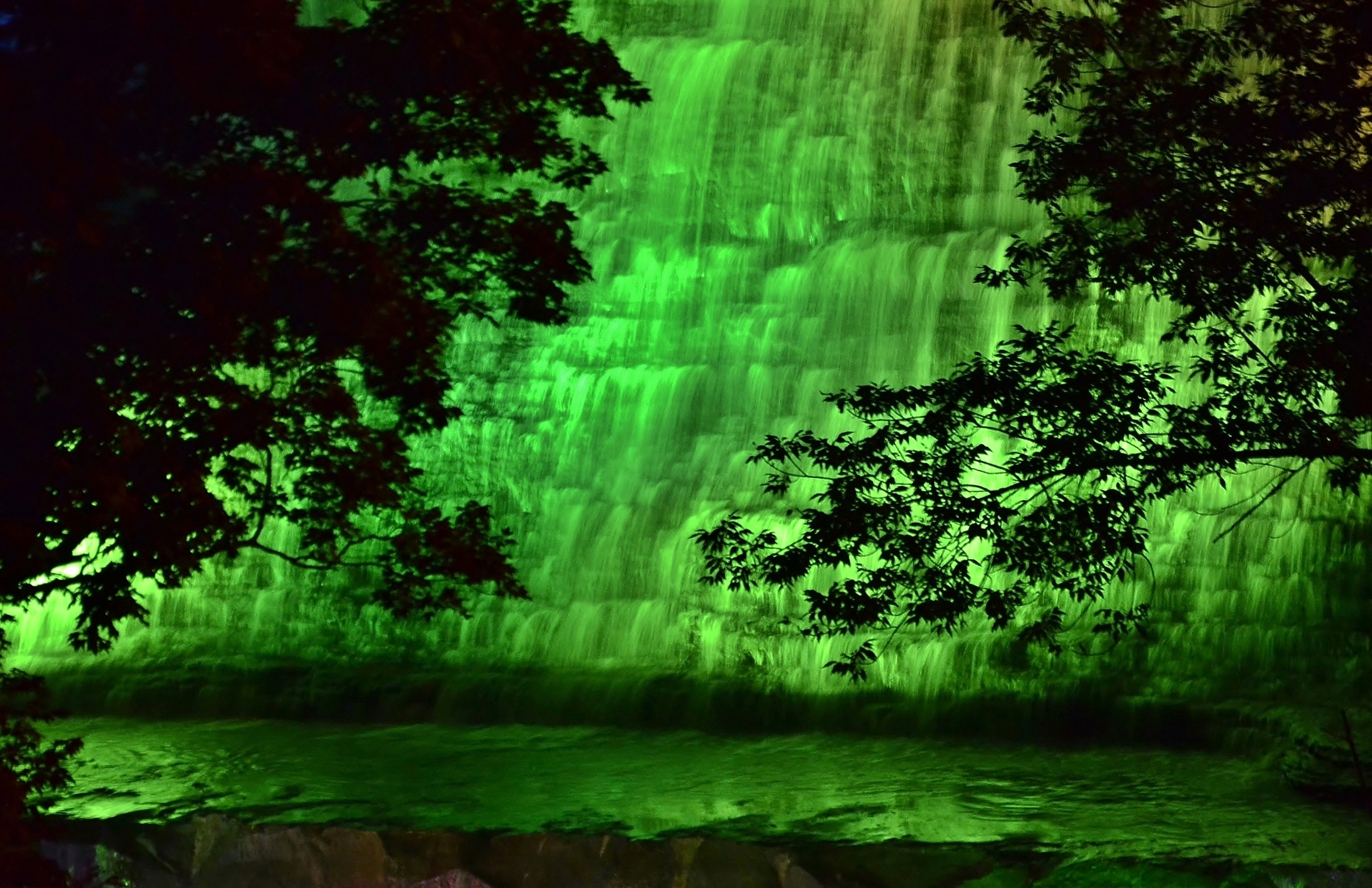 Albion Falls dressed in Green. Pic by Kelly Anne